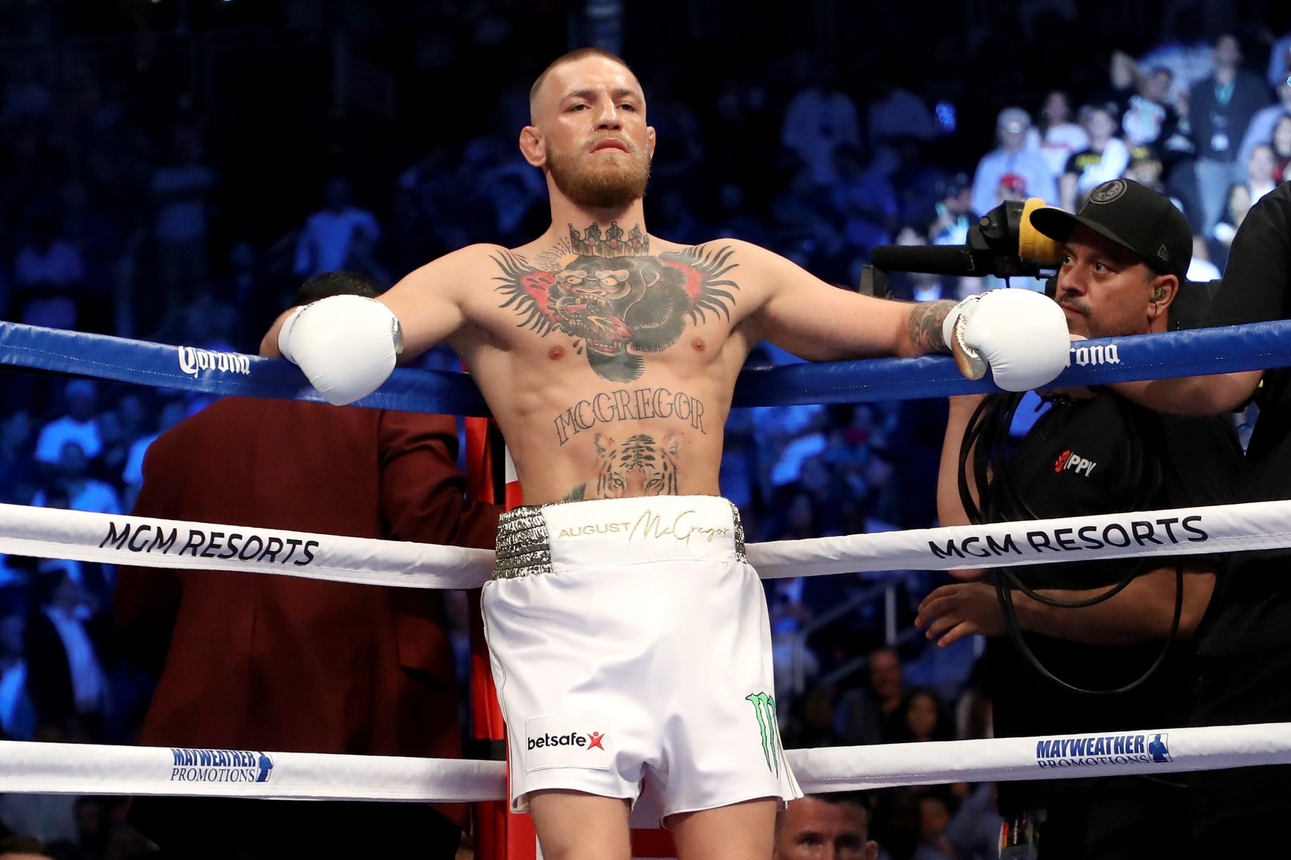 Conor McGregor could be boxing again