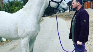 Michael Bisping posted this photo with a horse and Conor McGregor responded